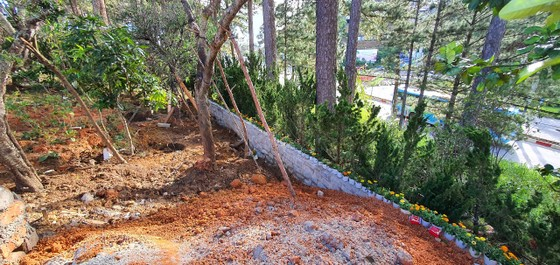Đà Lạt: Ngang nhiên lấn chiếm đất rừng ngay cửa ngõ thành phố ảnh 1