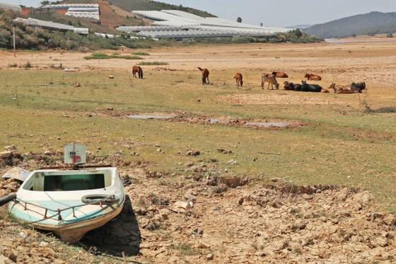 Xe máy thoải mái đi giữa lòng hồ Đan Kia – Suối Vàng  ảnh 4