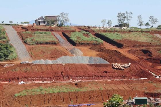 Lâm Đồng xử lý nhiều cán bộ liên quan tách thửa, quản lý đất đai ảnh 1