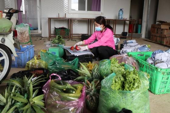 Mỗi ngày Lâm Đồng xuất 4.000 tấn rau, củ đi TPHCM ảnh 2