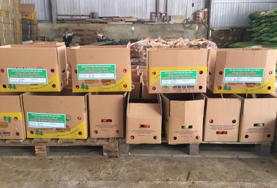 Nhiều địa phương hỗ trợ hàng hóa cho TPHCM ảnh 5