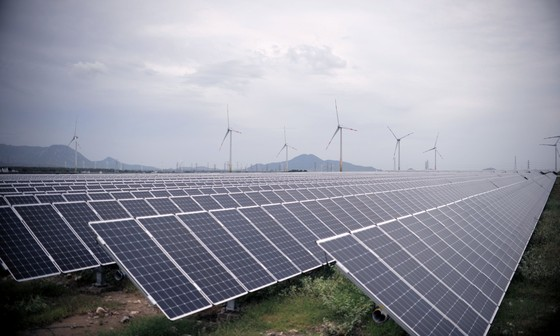 Ninh Thuận cần cơ chế để trở thành Trung tâm năng lượng tái tạo cả nước ảnh 5