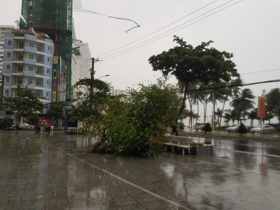 Những thiệt hại ban đầu của cơn bão số 12 ảnh 27