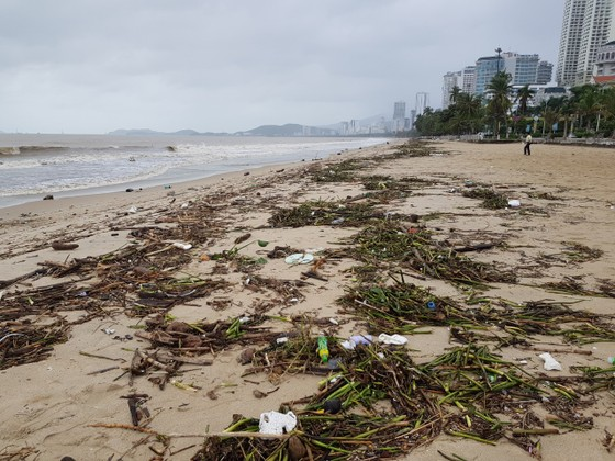 """Biển Nha Trang """"ngập"""" rác sau mưa lũ ảnh 1"""