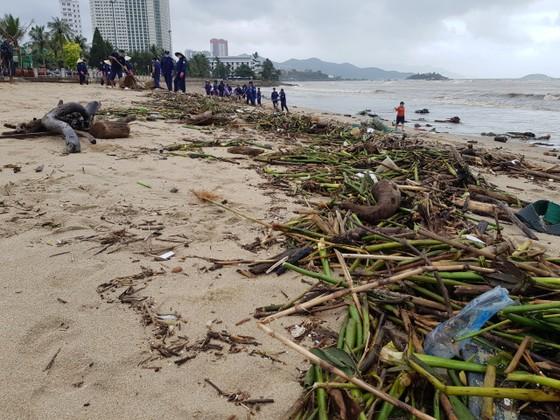 """Biển Nha Trang """"ngập"""" rác sau mưa lũ ảnh 3"""