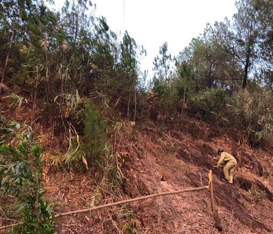 Đường dây 500kV Bắc Nam đã được đóng lại, không bị ảnh hưởng cháy rừng ảnh 2