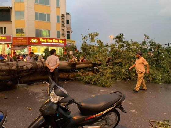 Tâm bão số 4 đã đổ bộ vào Quảng Bình - Quảng Trị? ảnh 4