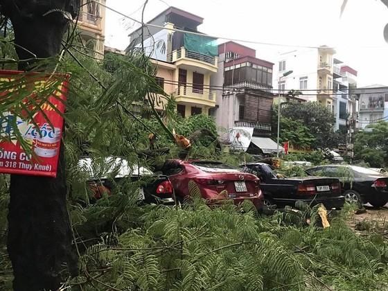 9 tàu bị chìm vì bão Podul, cứu được 60 người ảnh 3