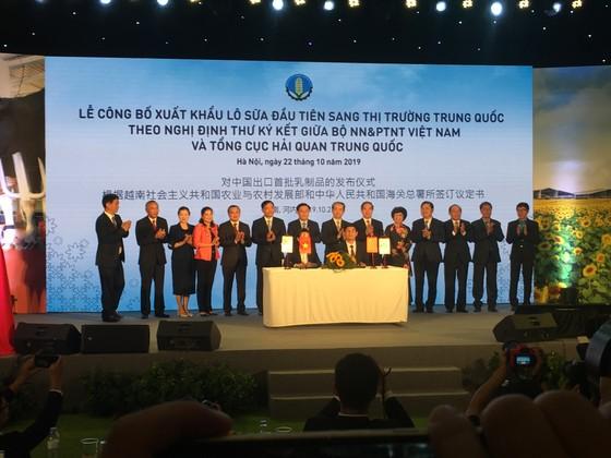 Việt Nam xuất khẩu lô sữa đầu tiên sang Trung quốc ảnh 1