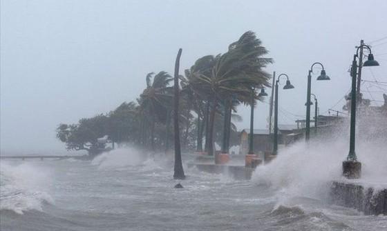 5 ngày nữa có 1 cơn bão nguy hiểm hướng vào nước ta ảnh 1