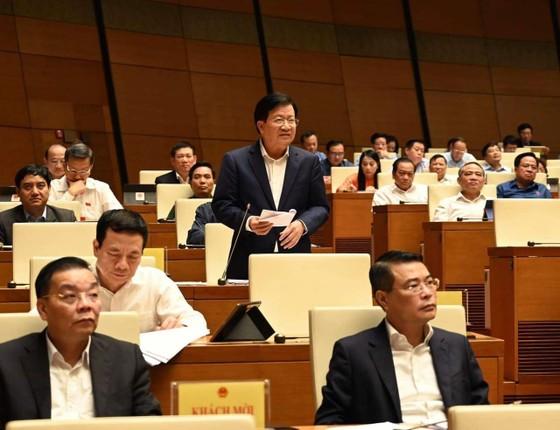 Phó Thủ tướng Trịnh Đình Dũng: Giảm đánh bắt, tăng nuôi trồng trên biển ảnh 1