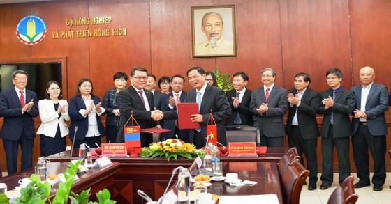Đề xuất mở đường bay thẳng Việt Nam - Mông Cổ ảnh 1