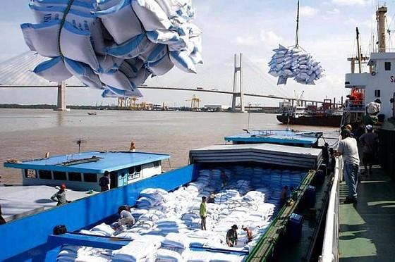 Việt Nam sẽ xuất khẩu gạo sang Hàn Quốc ảnh 1