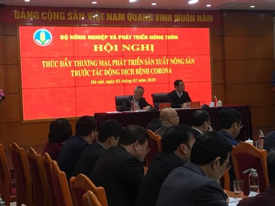 Đừng đưa thêm hàng hóa lên biên giới Việt - Trung nữa ảnh 3
