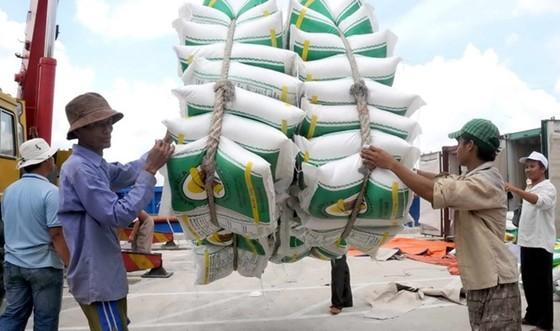 Bộ Công thương báo cáo Thủ tướng về việc điều hành xuất khẩu gạo ảnh 1