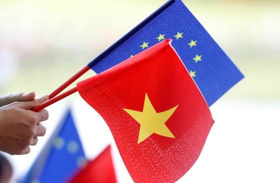 Sẵn sàng hồ sơ trình Quốc hội phê chuẩn EVFTA ảnh 1