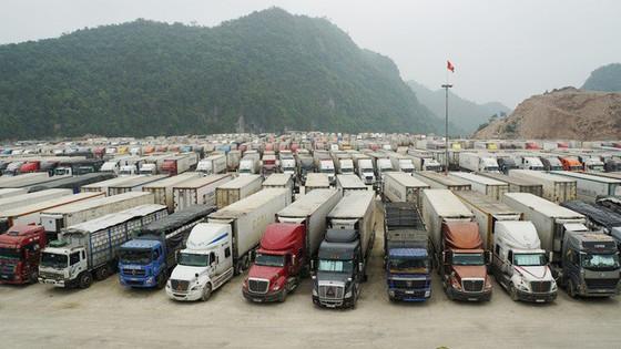 21 doanh nghiệp Việt Nam tìm cơ hội xuất khẩu nông sản sang Vân Nam – Trung Quốc ảnh 1