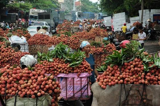 Tin vui bất ngờ cho trái vải Việt Nam ảnh 2