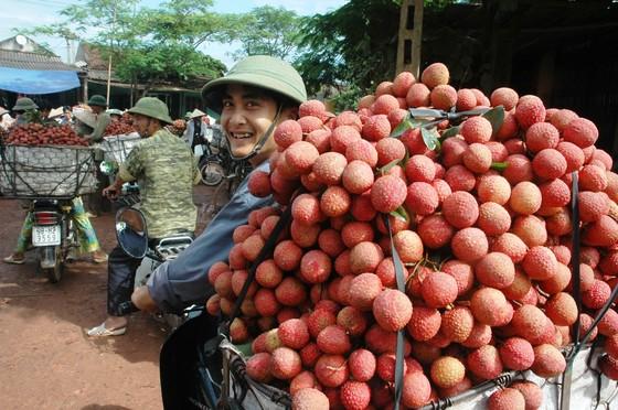 Tin vui bất ngờ cho trái vải Việt Nam ảnh 1