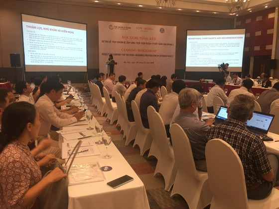 Việt Nam nhận 51,5 triệu USD để giảm phát thải khí nhà kính ảnh 1