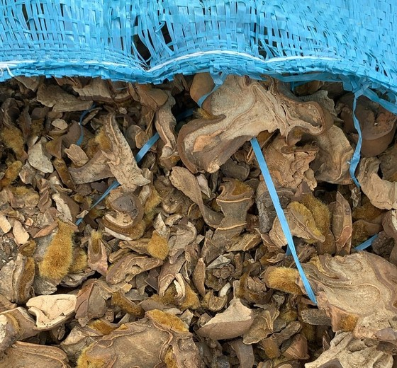 Bắt nửa triệu bao thuốc lá ngoại, hàng chục tấn dược liệu tại Móng Cái ảnh 3