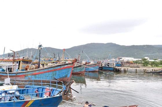Phó Thủ tướng Trịnh Đình Dũng đang ở tâm bão để chỉ huy ứng phó ảnh 4