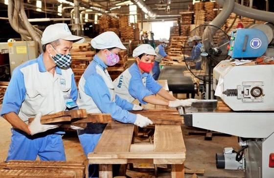 Lâm sản Việt Nam xuất siêu trên 3 tỷ USD ảnh 1