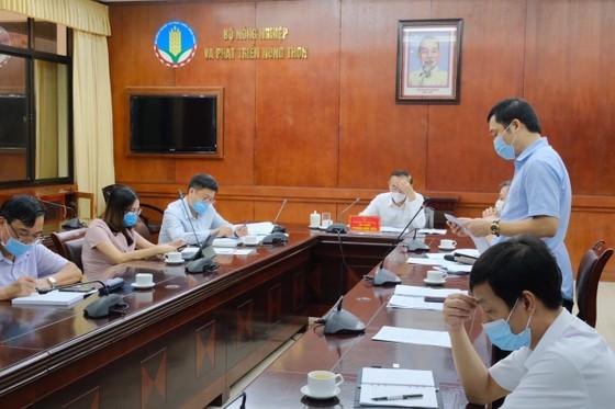 Nông sản Việt Nam xuất sang Trung Quốc gặp khó khăn ảnh 1