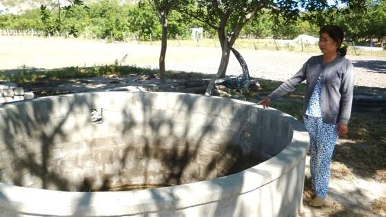 Chọn đơn vị độc lập làm rõ nguyên nhân cây chết gần Nhiệt điện Vĩnh Tân 2 ảnh 2