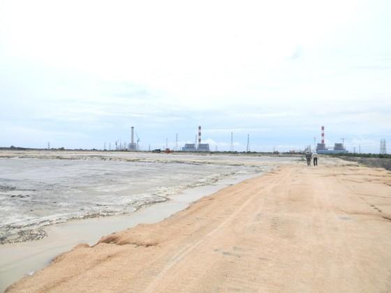 Cây chết gần bãi chứa tro xỉ than Nhiệt điện Vĩnh Tân 2 là do ngập úng ảnh 2