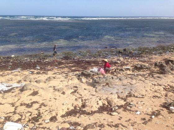 VIDEO: Khuyến cáo bà con không sử dụng hàng lạ trôi dạt vào đảo Phú Quý ảnh 3