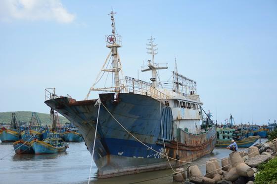 """Bán đấu giá """"con tàu ma"""" dạt vào biển Bình Thuận ảnh 1"""