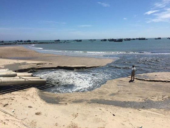 Nước có màu đen thải ra cửa biển La Gi không phải là nước thải từ các cơ sở chế biển hải sản ảnh 1