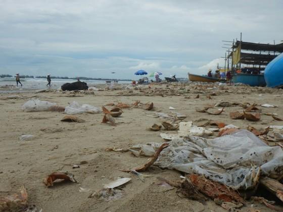 Ô nhiễm nghiêm trọng ở bãi Sau biển Mũi Né ảnh 2