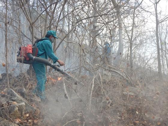 Khống chế vụ cháy rừng tại Khu bảo tồn thiên nhiên Tà Cú ảnh 3