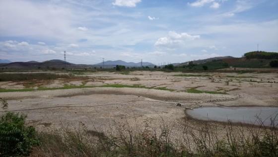 Hàng chục ngàn người thiếu nước sinh hoạt, Bình Thuận công bố tình huống khẩn cấp ảnh 3