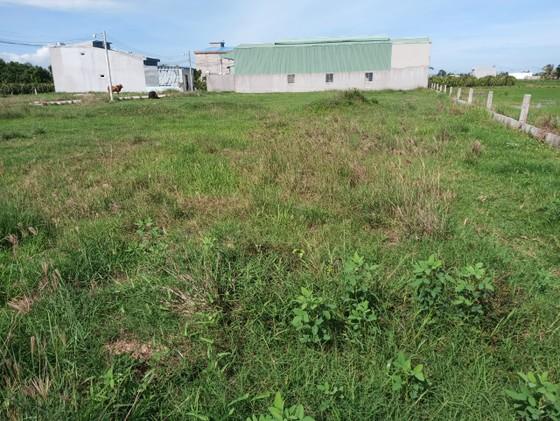 Kiến nghị cho tồn tại 132 thửa đất từng là tang vật trong vụ án sai phạm đất đai tại TP Phan Thiết ảnh 1