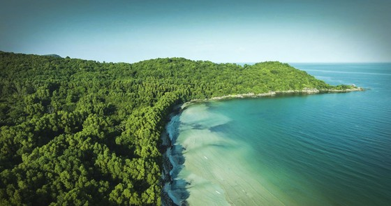 Tỷ phú thế giới nói gì về Bãi Kem, Phú Quốc  ảnh 1