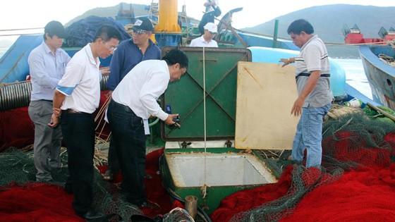 Sự số tàu vỏ thép tại Bình Định: Bộ Công An vào cuộc ảnh 1