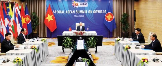 ASEAN và ASEAN+3 chia sẻ kinh nghiệm,  hợp tác ứng phó dịch Covid-19 ảnh 1