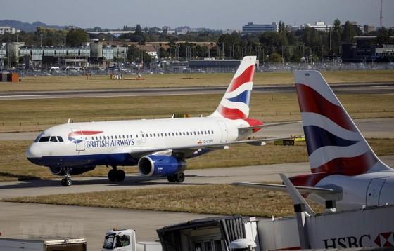 IATA cảnh báo về thiếu năng lực vận tải hàng hóa toàn cầu  ảnh 1