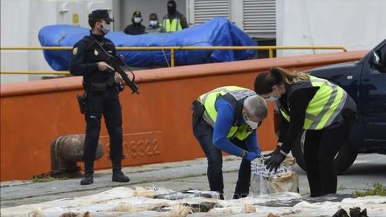Tây Ban Nha thu giữ 4 tấn cocaine ảnh 1