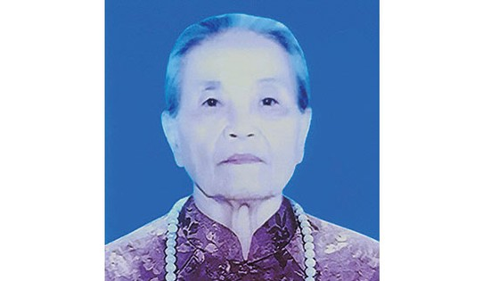 TIN BUỒN Bà mẹ Việt Nam anh hùng NGUYỄN THỊ ĐÀ ảnh 1