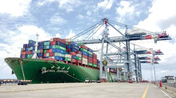 Tháo gỡ khó khăn cho doanh nghiệp cảng biển ảnh 1