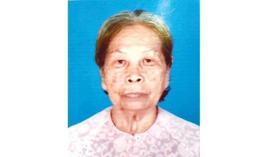 Tin buồn Bà mẹ Việt Nam Anh hùng Đỗ Thị Bê ảnh 1