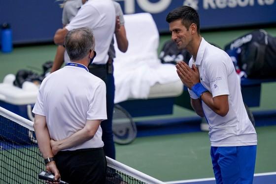 Djokovic xin lỗi trọng tài trong tuyệt vọng.