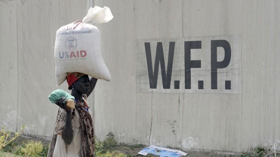 Giải Nobel Hòa bình năm 2020 vinh danh Chương trình Lương thực Thế giới (WFP) ảnh 1