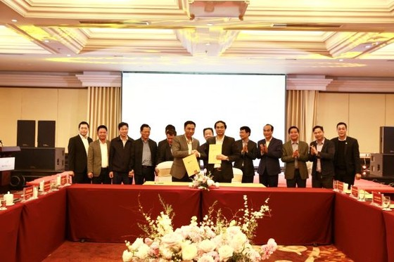 Tập đoàn T&T GROUP hợp tác chiến lược với 2 tỉnh Lào Cai và Cà Mau ảnh 3