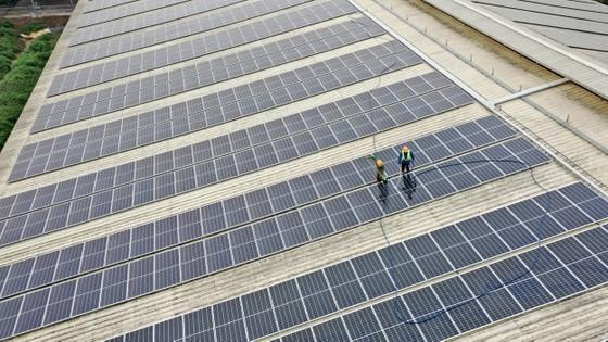 TH tạo nguồn năng lượng xanh từ mái nhà trang trại công nghệ cao đạt kỷ lục thế giới ảnh 1