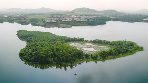 TH tạo nguồn năng lượng xanh từ mái nhà trang trại công nghệ cao đạt kỷ lục thế giới ảnh 2